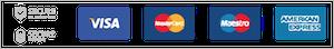 Visa Maestro MasterCard American Express